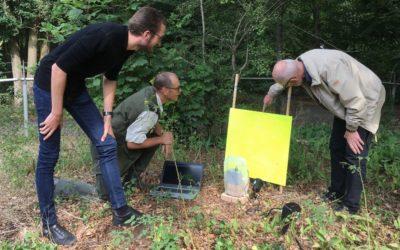 Automatisch insecten herkennen en tellen