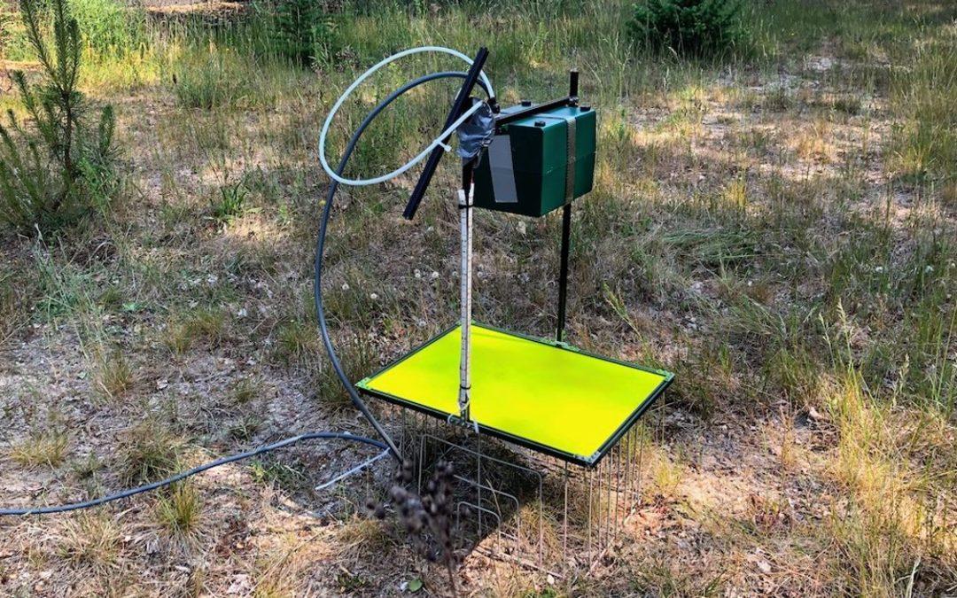 Vroege vogels radio: Intelligent systeem herkent insecten