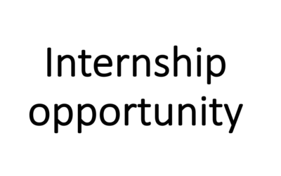 DIOPSIS Internship: Large scale image processing